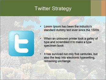 Underwater Life PowerPoint Templates - Slide 9