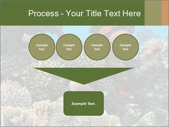 Underwater Life PowerPoint Templates - Slide 93