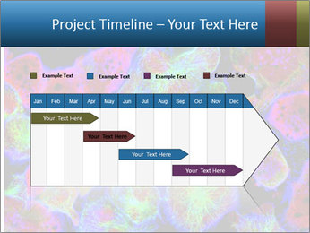 Bright Microscopic Cells PowerPoint Templates - Slide 25