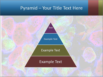 Bright Microscopic Cells PowerPoint Templates - Slide 30
