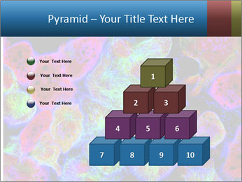 Bright Microscopic Cells PowerPoint Templates - Slide 31