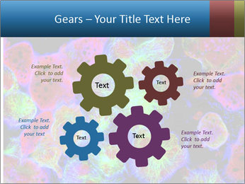 Bright Microscopic Cells PowerPoint Templates - Slide 47