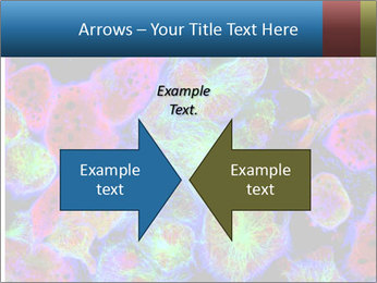 Bright Microscopic Cells PowerPoint Templates - Slide 90