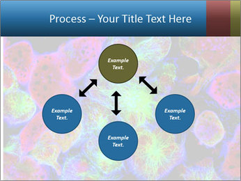 Bright Microscopic Cells PowerPoint Templates - Slide 91