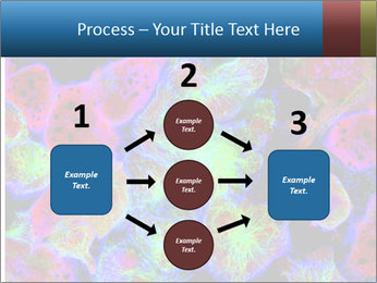 Bright Microscopic Cells PowerPoint Templates - Slide 92