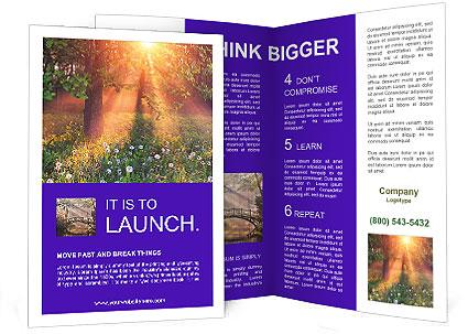 0000089489 Brochure Template