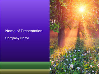 Shiny Walkpath PowerPoint Templates - Slide 1