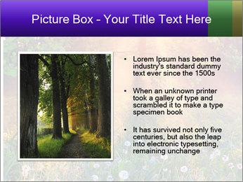 Shiny Walkpath PowerPoint Templates - Slide 13