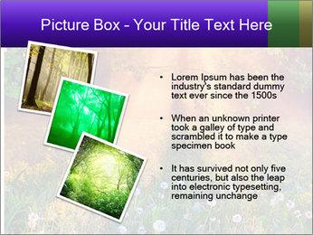 Shiny Walkpath PowerPoint Templates - Slide 17