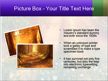 Shiny Walkpath PowerPoint Templates - Slide 20