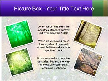 Shiny Walkpath PowerPoint Templates - Slide 24