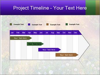 Shiny Walkpath PowerPoint Templates - Slide 25