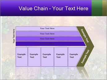 Shiny Walkpath PowerPoint Templates - Slide 27