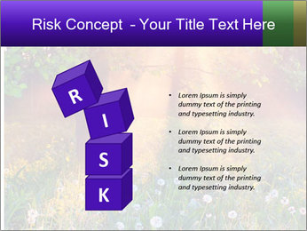 Shiny Walkpath PowerPoint Templates - Slide 81