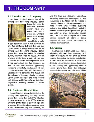 0000089489 Word Template - Page 3
