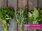 Fresh Herbs PowerPoint Templates