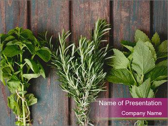 Fresh Herbs PowerPoint Templates - Slide 1