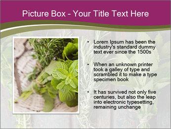 Fresh Herbs PowerPoint Templates - Slide 13