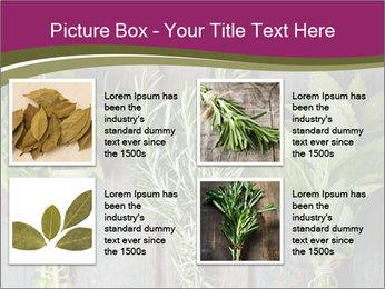 Fresh Herbs PowerPoint Templates - Slide 14