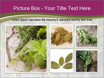 Fresh Herbs PowerPoint Templates - Slide 19