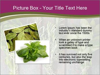 Fresh Herbs PowerPoint Templates - Slide 20