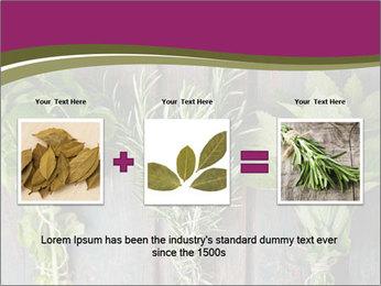 Fresh Herbs PowerPoint Templates - Slide 22