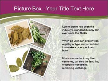 Fresh Herbs PowerPoint Templates - Slide 23