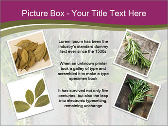Fresh Herbs PowerPoint Templates - Slide 24