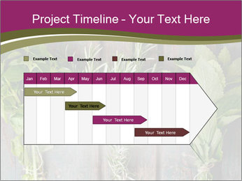 Fresh Herbs PowerPoint Templates - Slide 25