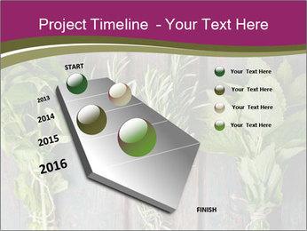 Fresh Herbs PowerPoint Templates - Slide 26
