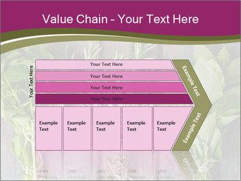 Fresh Herbs PowerPoint Templates - Slide 27
