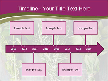 Fresh Herbs PowerPoint Templates - Slide 28