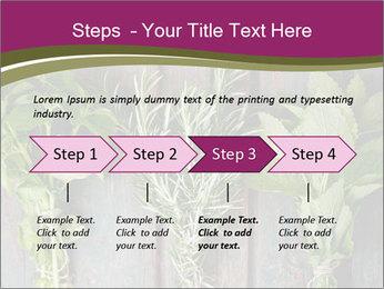 Fresh Herbs PowerPoint Templates - Slide 4