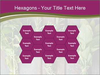 Fresh Herbs PowerPoint Templates - Slide 44