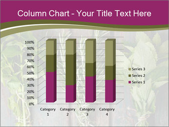 Fresh Herbs PowerPoint Templates - Slide 50