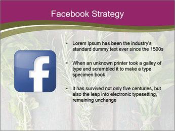 Fresh Herbs PowerPoint Templates - Slide 6