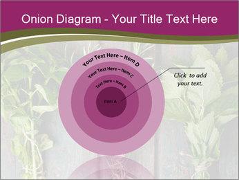 Fresh Herbs PowerPoint Templates - Slide 61