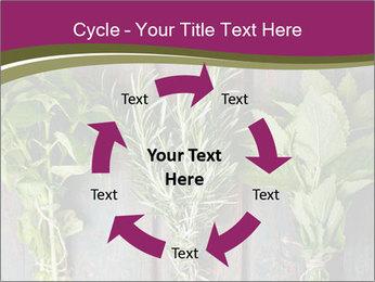 Fresh Herbs PowerPoint Templates - Slide 62