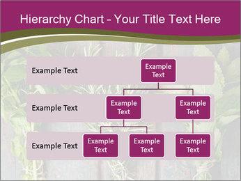 Fresh Herbs PowerPoint Templates - Slide 67