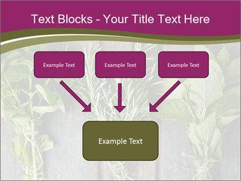 Fresh Herbs PowerPoint Templates - Slide 70