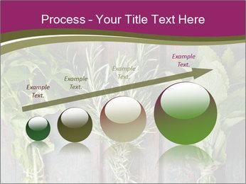 Fresh Herbs PowerPoint Templates - Slide 87