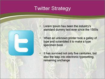 Fresh Herbs PowerPoint Templates - Slide 9