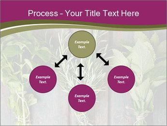 Fresh Herbs PowerPoint Templates - Slide 91