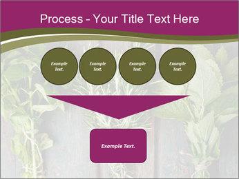Fresh Herbs PowerPoint Templates - Slide 93