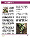 0000089491 Word Template - Page 3