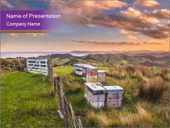 Beekeeping PowerPoint Template - Slide 1