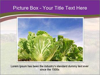 Beekeeping PowerPoint Template - Slide 15
