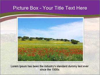 Beekeeping PowerPoint Template - Slide 16