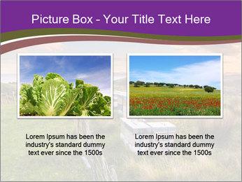 Beekeeping PowerPoint Template - Slide 18