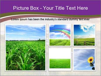 Beekeeping PowerPoint Template - Slide 19